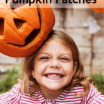 denton area pumpkin patches